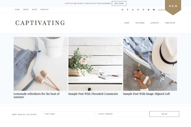 Minimalist Blog Design - Captivating Theme