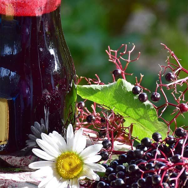 How to Make Elderberry Syrup Recipe