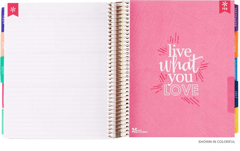 Erin Condren Life Planner Monthly Notes